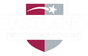 Schools Performance Academies
